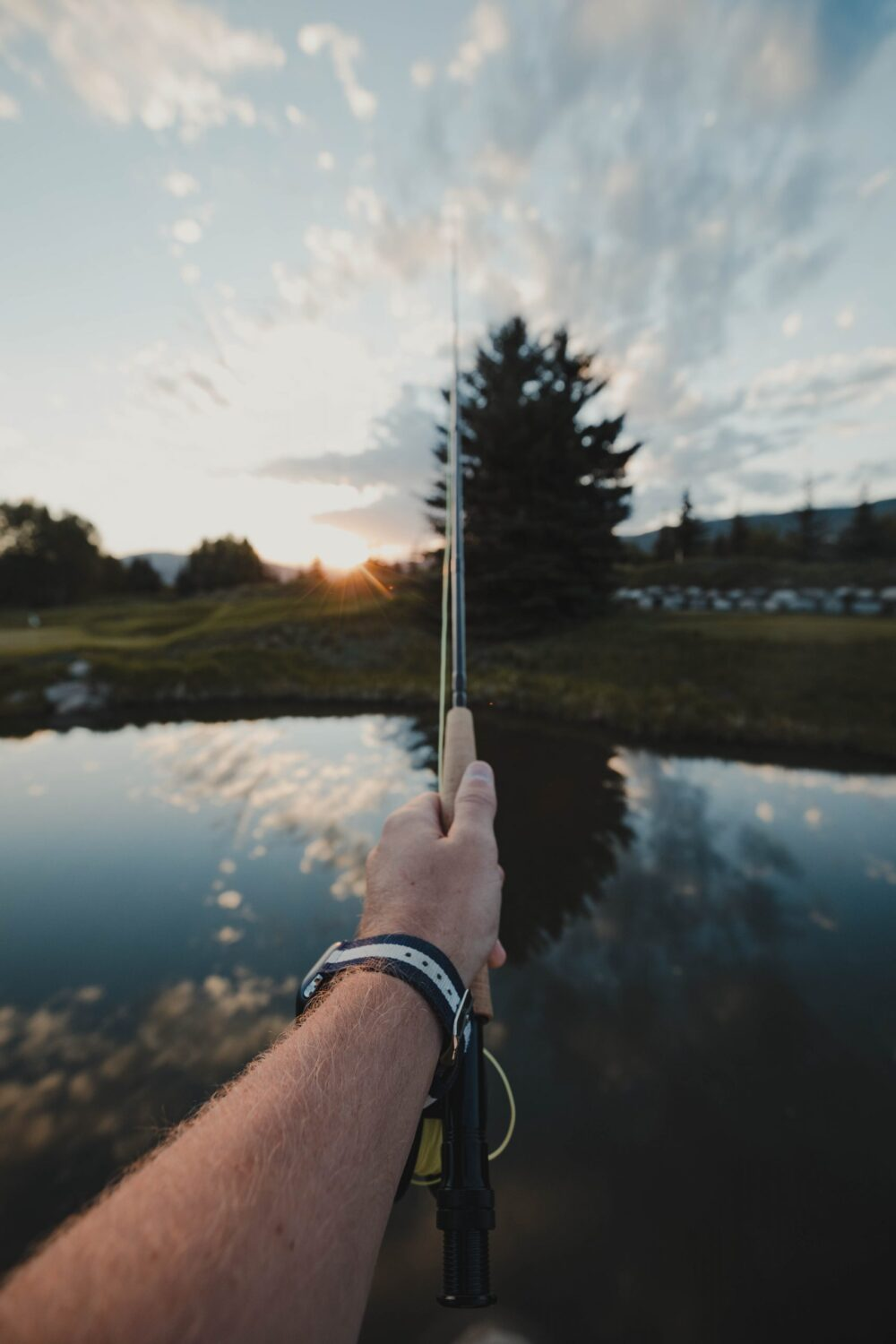 Tips for Buying a Used Fishing Rod