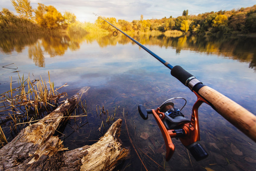 What Fishing Rod is Best for You?